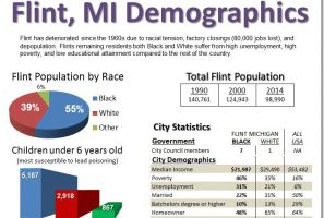 Flint, Michigan Demographics