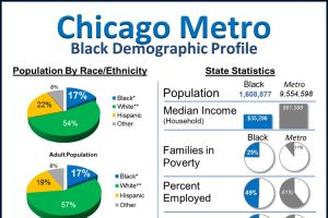 Chicago Black Population