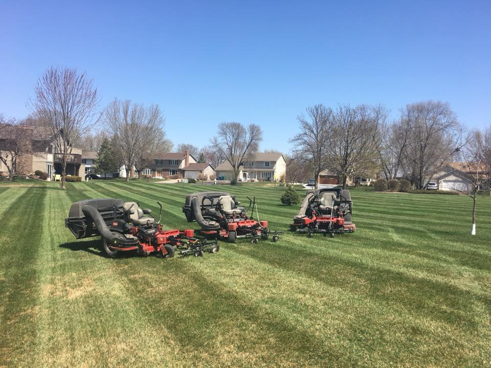 Spring Lawn Clean Up and Dethatching