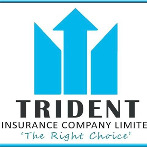 TRIDENT INSURANCE COMPANY LIMITED