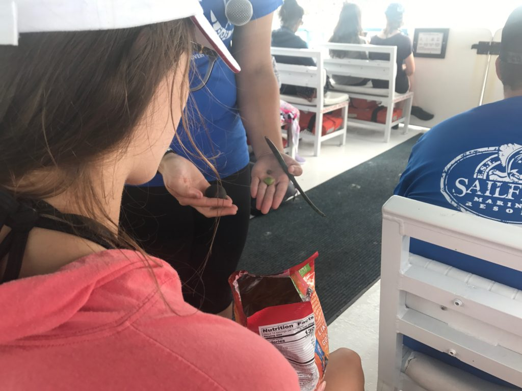 Teen girl viewing marine items on field trip