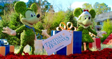 Top 3 Activities at Epcot Festival of the Holidays