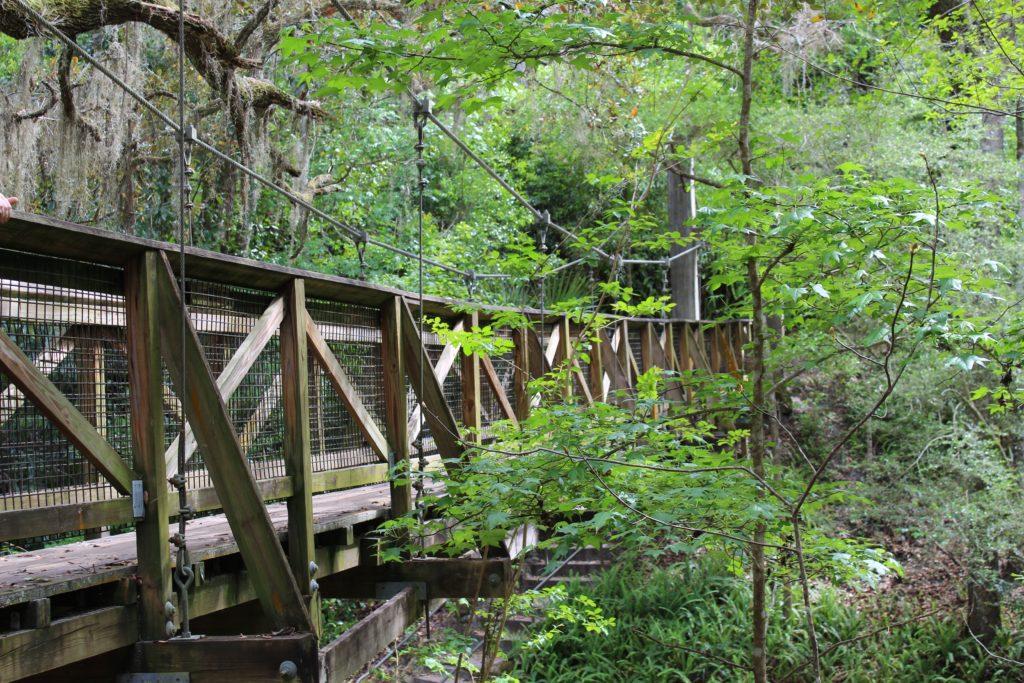 Side view of suspension bridge at Ravine Gardens State Park