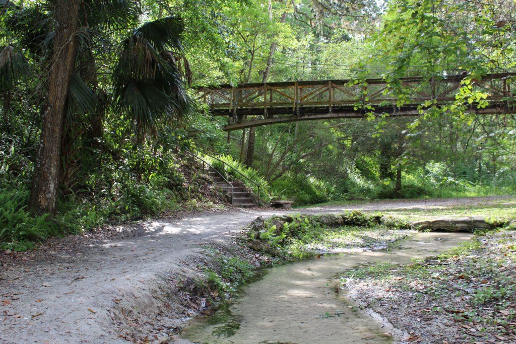 Stream and bridge at Ravine Gardens Park