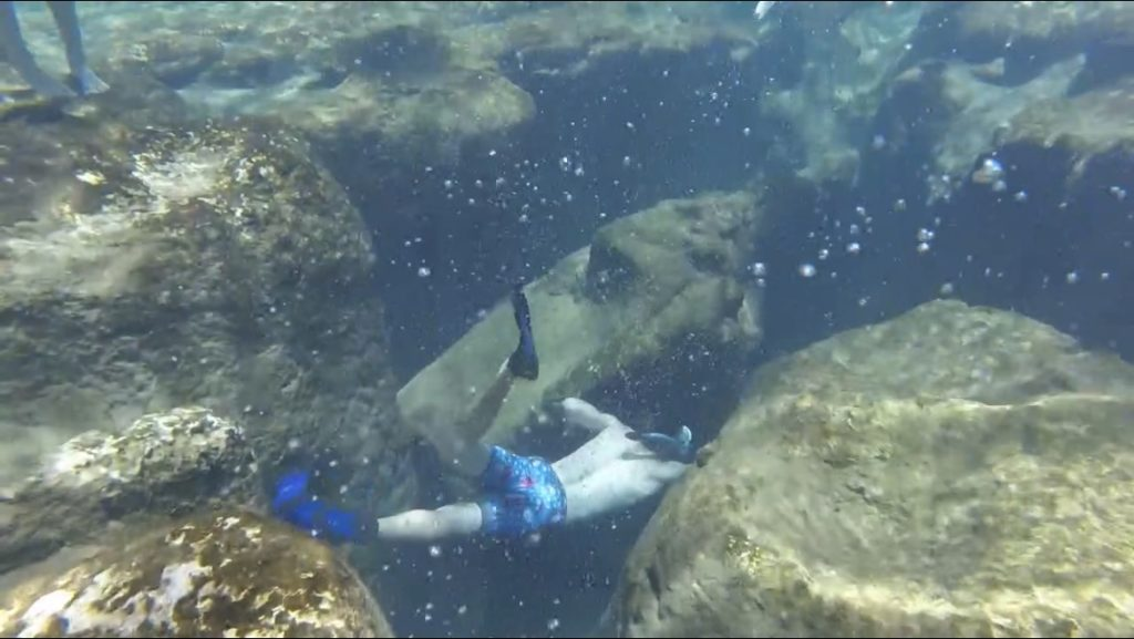 boy snorkeling into springs fissures