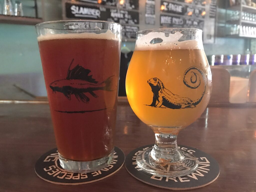 pint glasses from breweries to visit around Fort Lauderdale