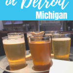 best breweries in detroit area pinterest