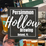 Pinterest Collage of images for Persimmon Hollow Brewing