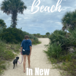 New Smyrna Dog Beach Pinterest image