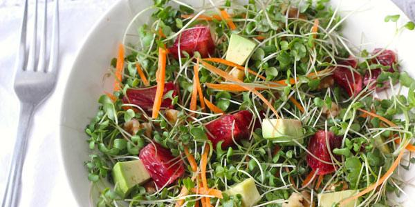 Asian Microgreen Chicken Salad