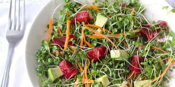 Asian Microgreen Chicken Salad