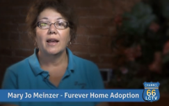 Mary Jo Meinzer, President Furever Home Adoption