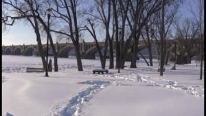 Nature Snow Jan 2016 – V2