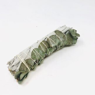 White Sage and Eucalyptus Bundle Large (9 Inch)