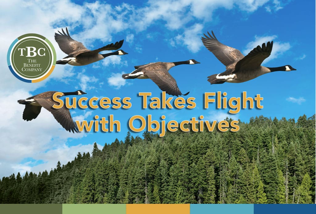 Success takes flight with objectives