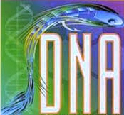 DNA Fly Tying MAterials