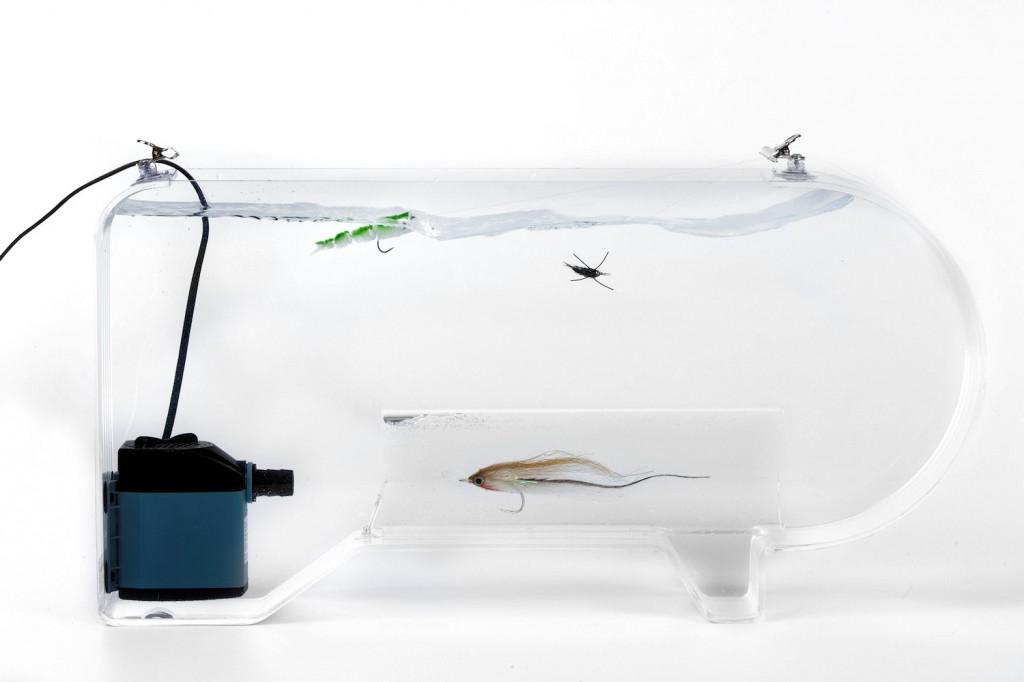 Flymen Fishing Company Fish Skull Swim Tank C