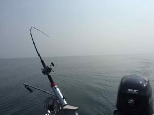 Big Jon Downriggers Lake Ontario Downrigging BB