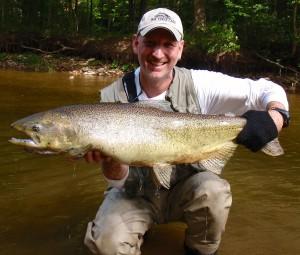 Bronte-Creek-Chinook-Salmon