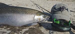 Coho Fishing on the Ganaraska River FFF