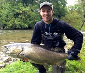Credit River Chinook Salmon A