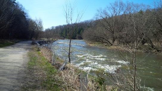 Credit River at Erindale Park above Dundas April 24th at 9am