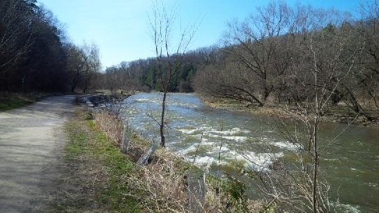 Credit River at Erindale Park above Dundas April 24th at 9am