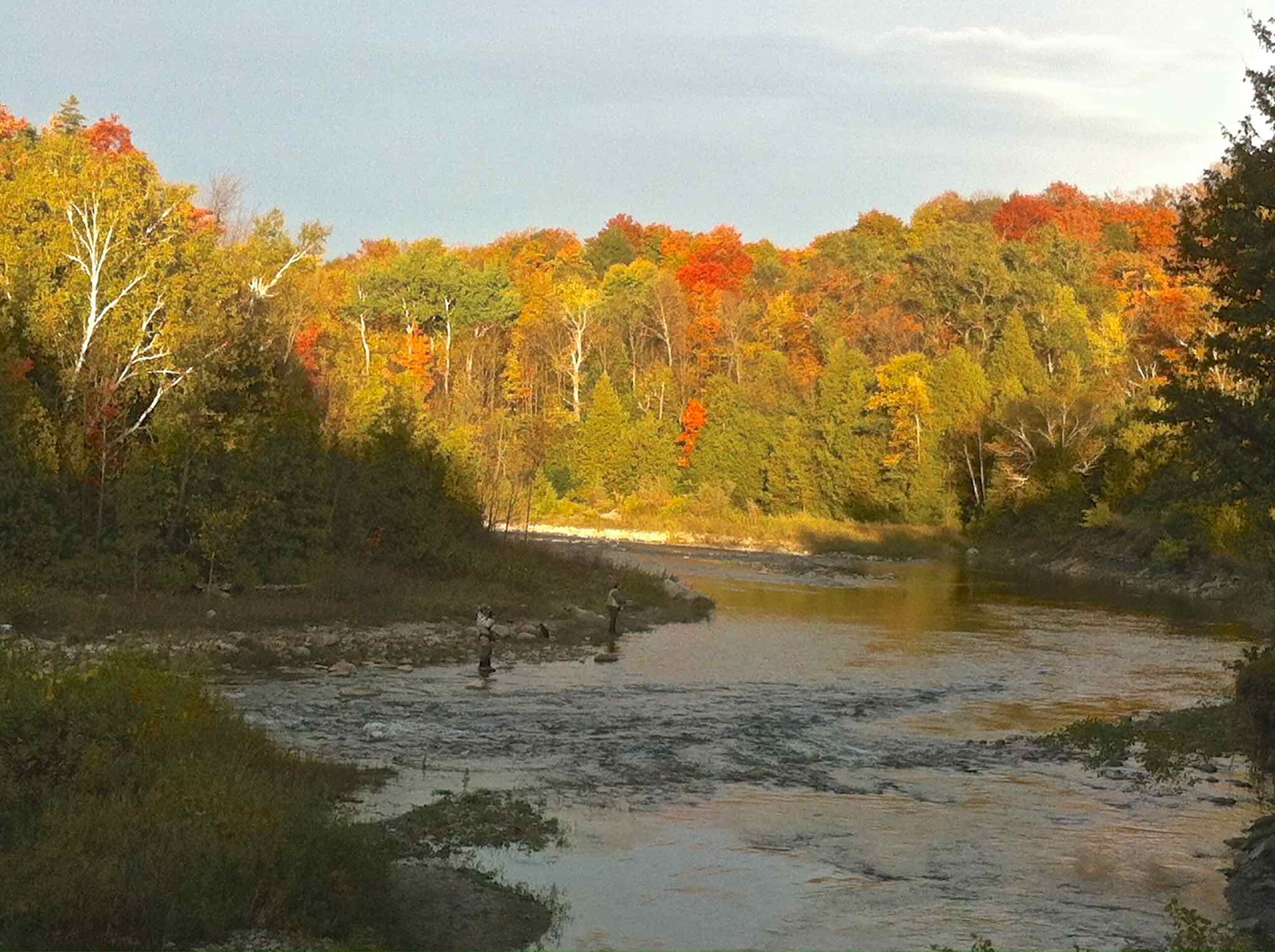 The Bighead River in Meaford Updtream from The Legion Hole Fall AA