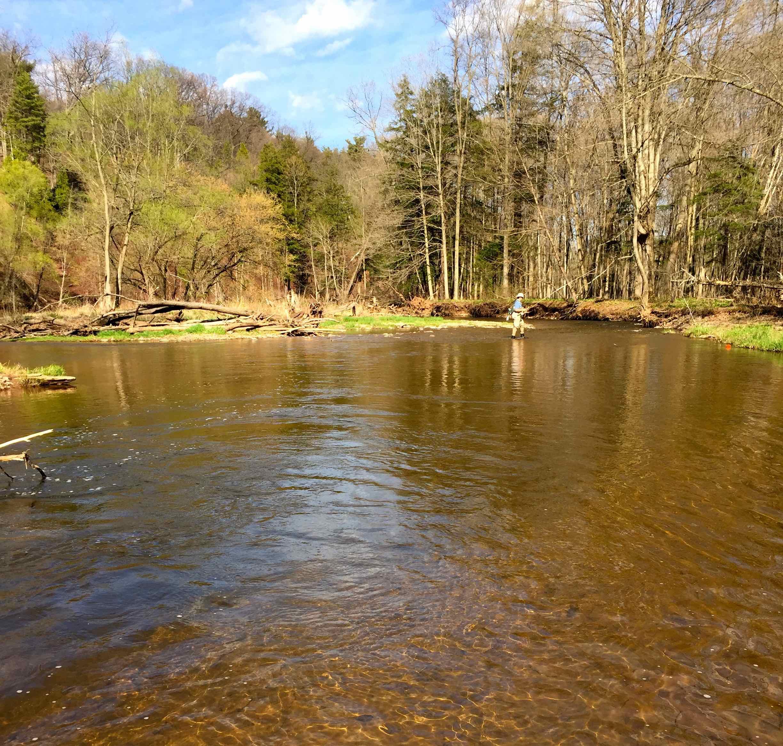 The Bronte Creek or 12 Mile Creek Steelheading Upper Middle Road BBB