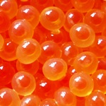 C.A.C Natural Salmon Eggs sea_run_salmon_eggs