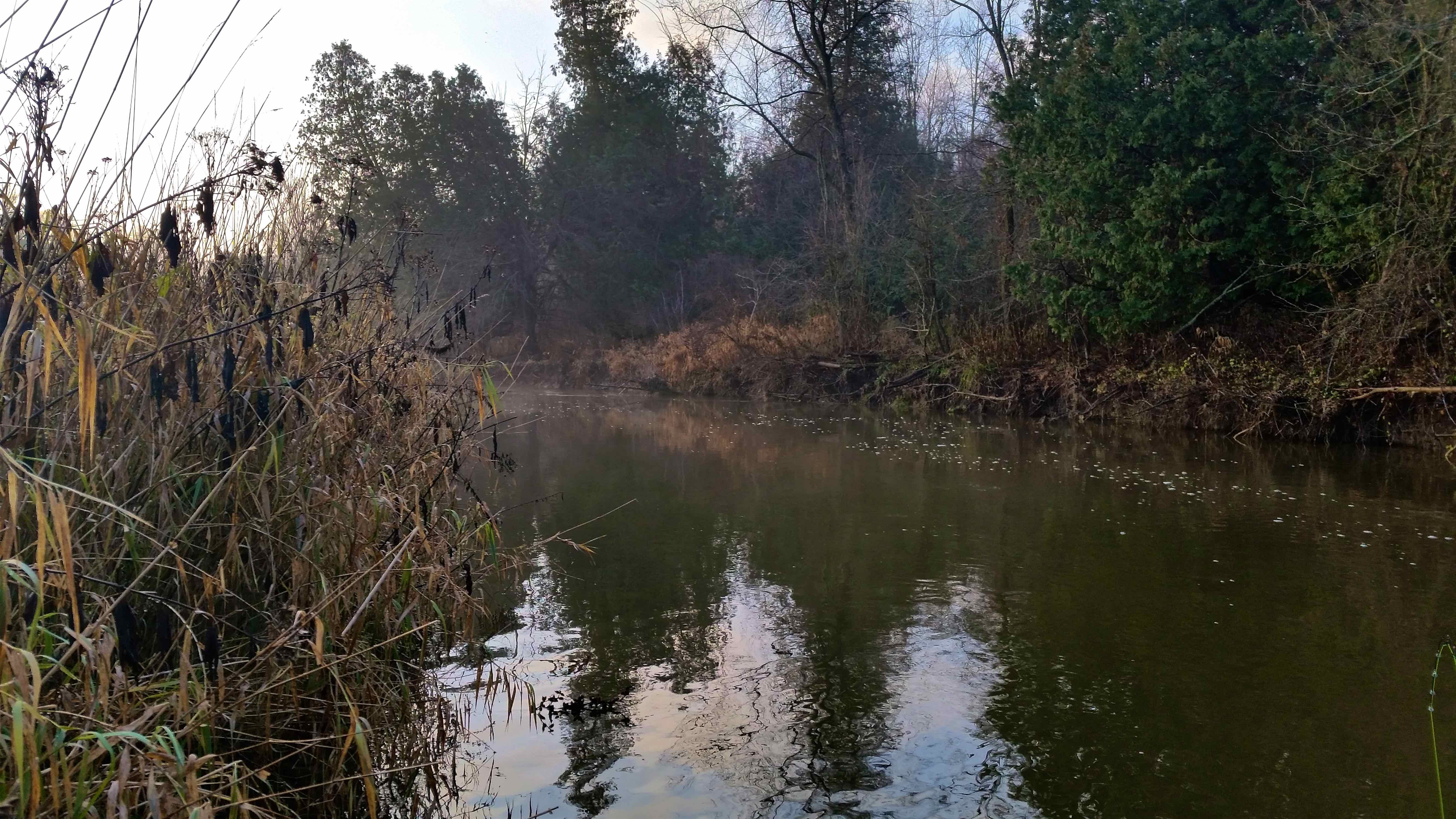 The Nine Mile River Port Albert Ontario EEE