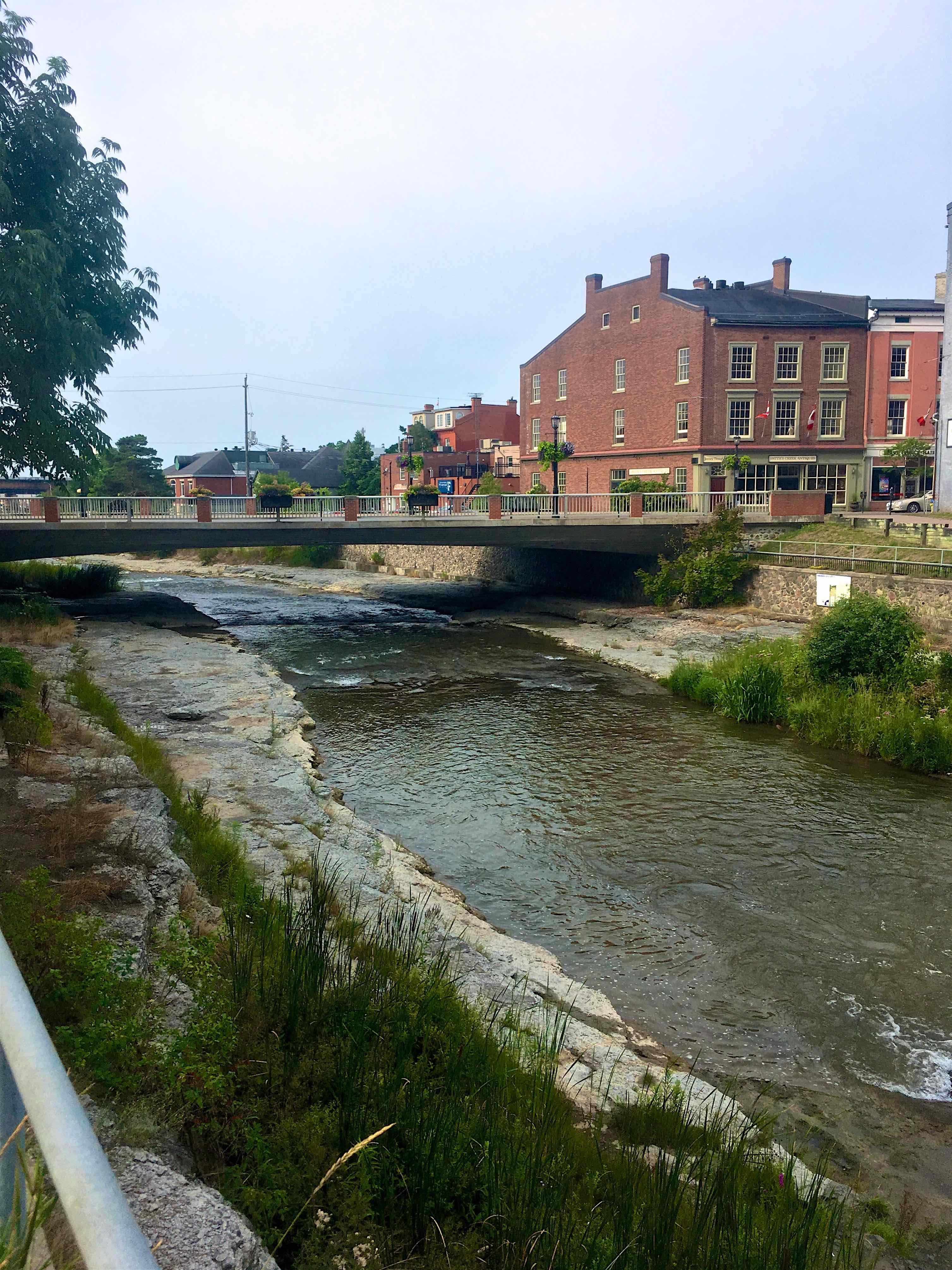 "Migratory - The Ganaraska River or The ""Ganny"" - Port Hope, Ontario"