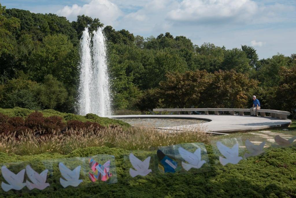 garden of reflection(2)