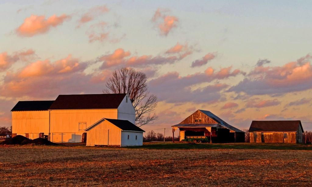 patterson sunset 5