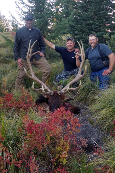 Idaho Elk Hunts by Selway Ridgerunners Outfitter