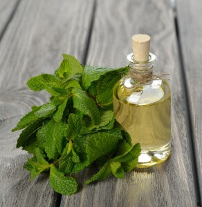 5 Health Benefits Of Peppermint