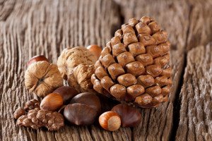 How To Boost Your Immune System This Fall 5