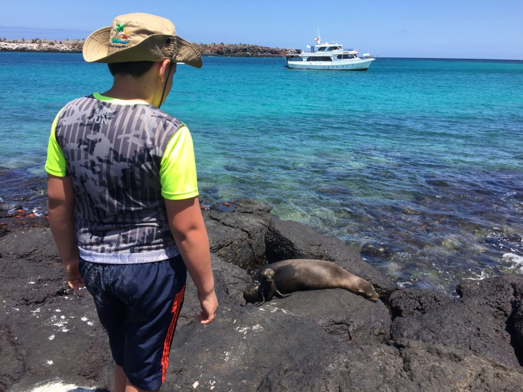 Discovering the family dynamics of Sea Lions on the Galapagos