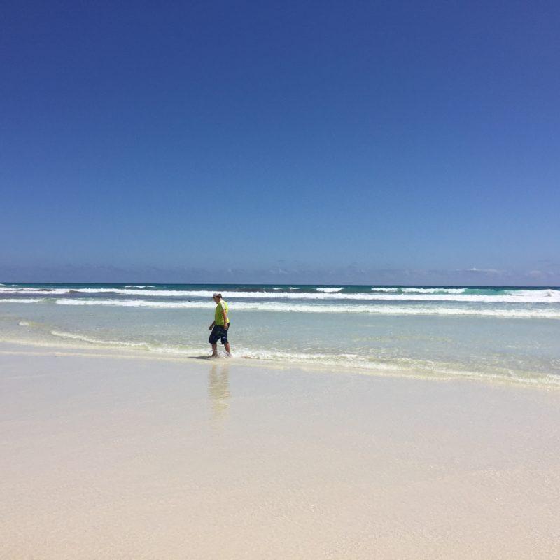 beaches galapagos