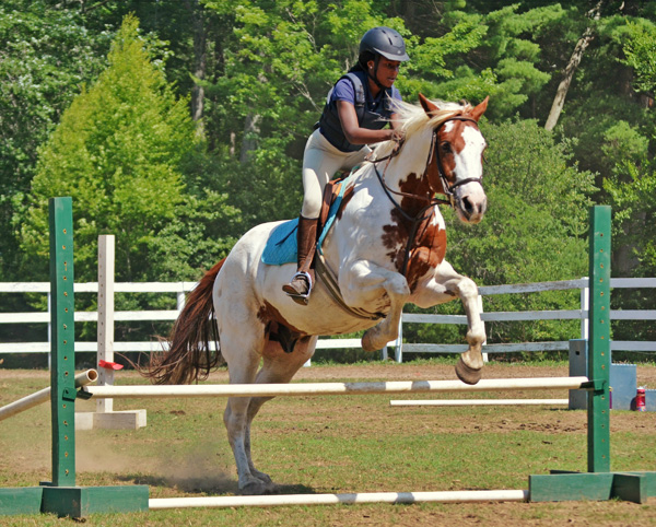 Camp Riding Lessons