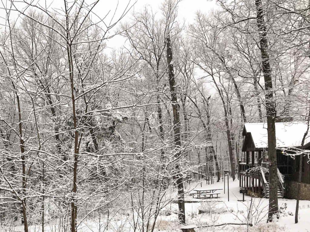 rental cabin in the winter woods