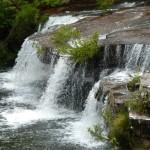 Winifred Falls, Royal National Park
