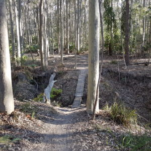 Nowra Mountain Bike Trails