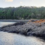 Bass Point Illawarra