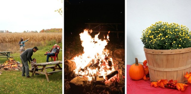 harvest-party-collage