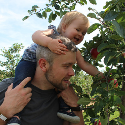 Picking Apples at Chudleighs