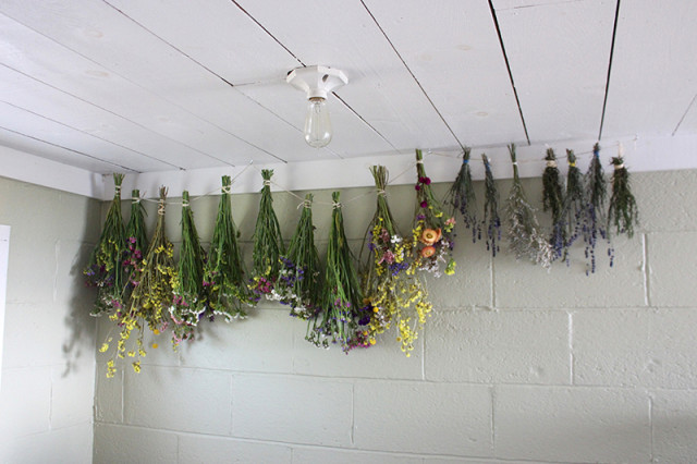 flowers-drying-cold-storage