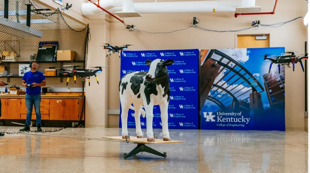 can a drone recognize the cow?