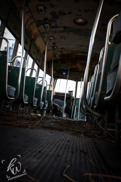 A deserted bus, overgrown with foliage.