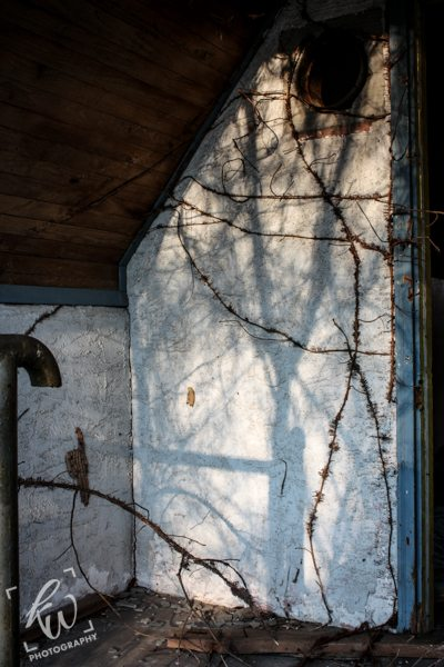 Shadows play over the white face of an abandoned building.
